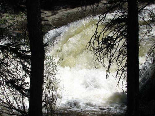 6-15-11 Wild Basin 019