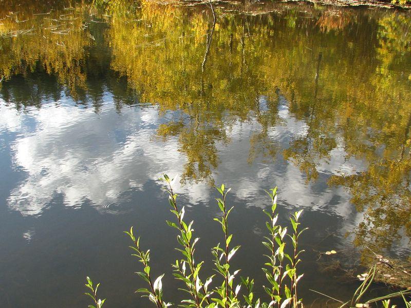 9-27-11 Hessie Sept. 2011 047