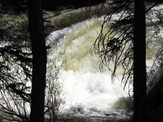 1 Wild Basin Copeland Falls, June 2011 019