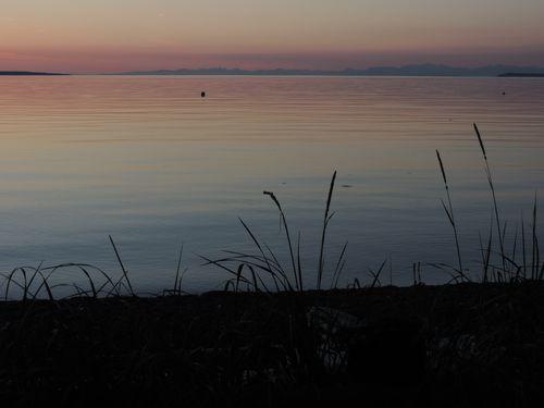 Orcas island, WA May 2014 182