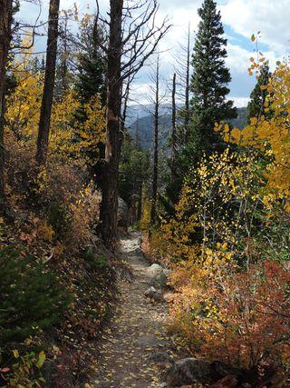 Wild Basin, Sept. 2015 032