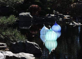 10-21-14 Chihuily Botanic Gardens 038
