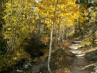19 Halowell Park, RMNP, Oct 07 049