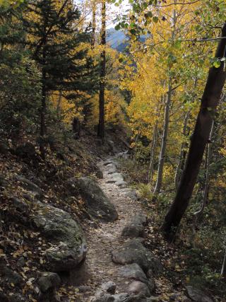 Finch lake trail DSCN0465 (2)